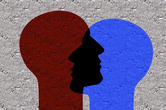 červená a modrá hlava.jpg