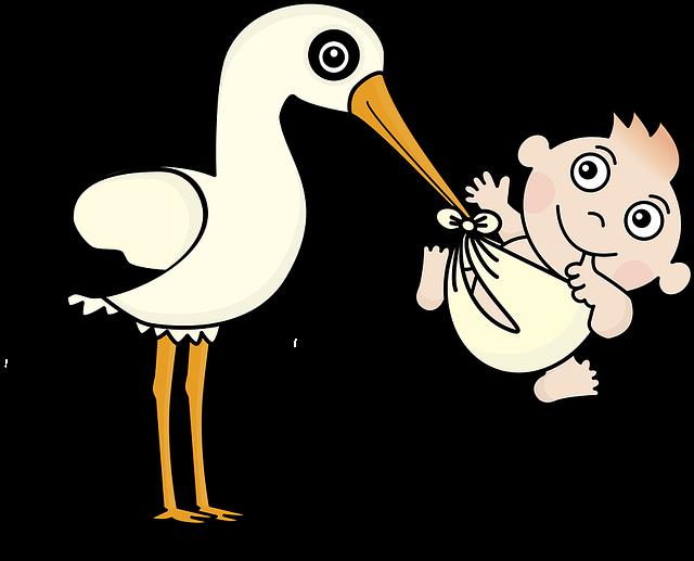 čáp a miminko